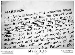 mark 8 vs 36